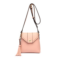 Cute Flap Crossbody Bag