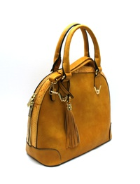 Snake Print Accent 2 Way Dome Satchel