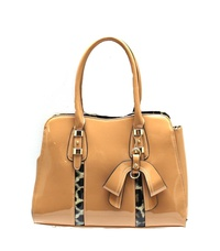 Fashion With Leopard Handbag