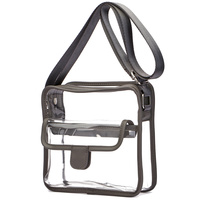 See Thru Boxy Satchel
